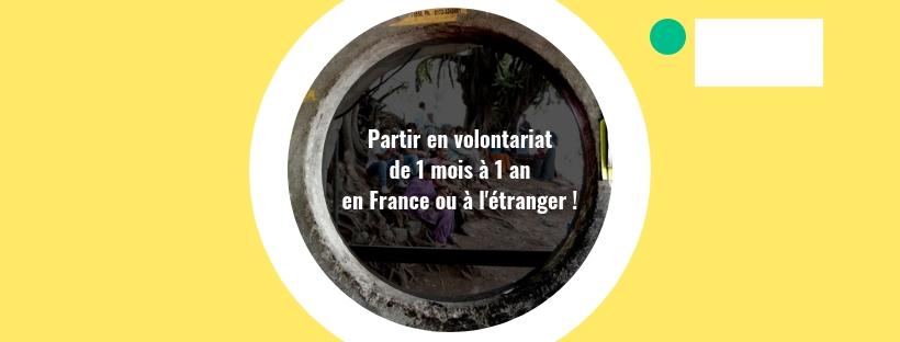 FOCUS sur Le volontariat de partenariat international (moyen - long terme : de 1 mois à 1an)